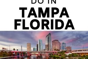 With so much to see and do in Tampa make sure to add in these free things to do in Tampa FL to save on your budget and take in the history of the area! #ourroaminghearts #florida #freethingstodo #thingstodo #familyvacation #tampa | Free things to do in Tampa | Tampa Florida | Things to do in Tampa | Budget-Friendly Things to do in Tampa | Tampa on a Budget | Family Activities in Tampa