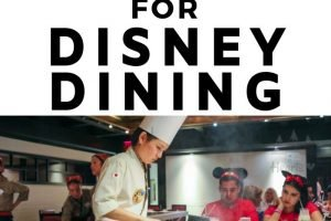 There are so many Disney Restaurants it can be impossible to figure out where the best Disney dining really is. So let me break it down for you! #ourroaminghearts #florida #disney #disneydining #restaurants #orlando   Disney Dining Options   Orlando Florida   Florida   Disney Restaurants   Theme Park Food