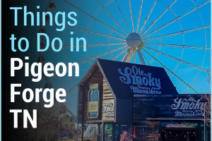 Our comprehensive list of free things to do in Pigeon Forge TN. You will not want to miss any of these so plan accordingly to visit them all! #ourroaminghearts #tennessee #frugaltravel #familyattractions #pigeonforge #thingstodo | Things to do in Pigeon Forge | Tennessee Travel | Frugal Travel | Free things to do | National Parks |
