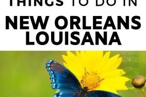 There are all sorts of kid-friendly activities in the big easy! Take part in these 7 kid-friendly things to do in New Orleans. #neworleans #louisiana #familyactivities #ourroaminghearts #thingstodo   Things to do in New Orleans   Kid-Friendly Activities in New Orleans   New Orleans   Family Travel