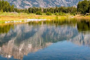 Planning a trip to the Grand Tetons National Park with your kids? Take a look at 12 safety and fun tips to make sure everyone has an awesome time.  #ourraminghearts #grandtetons #nationalpark #travelingwithkids #grandtetonsnationalpark #wyoming | Grand Tetons National Park | National Parks | Wyoming Travel | Traveling with Kids | Family Travel | Grand Tetons