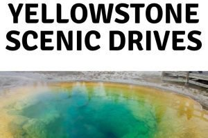 Yellowstone National Park is a beautiful park filled with wildlife and epic views. Here are some of the best Yellowstone Scenic Drives to take. #ourroaminghearts #yellowstone #wyoming #scenicdrives #nationalpark   Wyoming   National Parks   Yellowstone National Park   Scenic Drives   Yellowstone Scenic Drives