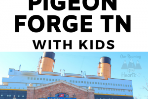 5 Fun Things to do in Pigeon Forge Tennessee with Kids Pin 2