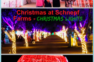 Christmas at Schnepf Farms is truly a winter wonderland that will leave you speechless and provide you with some of the best memories. #christmas #ourroaminghearts #schnepffarms #christmaslights #arizona   Arizona Christmas Lights   Schnepf Farms   Christmas Lights   Family Christmas Fun   Arizona  